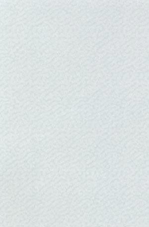 Vellum Accent Patterned - Shimmer