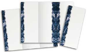 Blue Carrara Brochure Plus